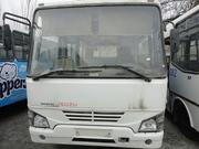 автобус Isuzu Midi